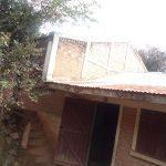 Repair of the roof
